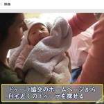 〔産後ケア〕日本経済新聞・映像:ドゥーラが見つめる産後ママの今